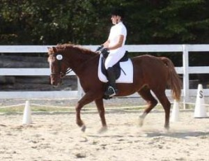 Col's Whitefact - Bakshir Curly mare