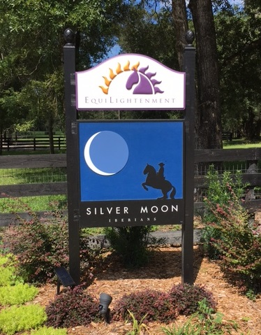 Welcome to Silver Moon